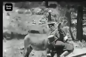 Donkey not moving from the way of train - very rear video clip