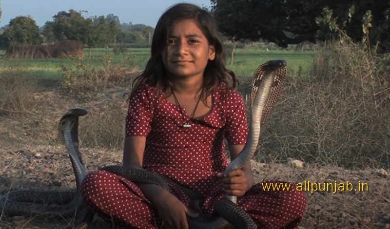 Snake Girl playing with snakes India