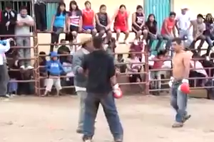 These are real fights, aren`t they -  Haha