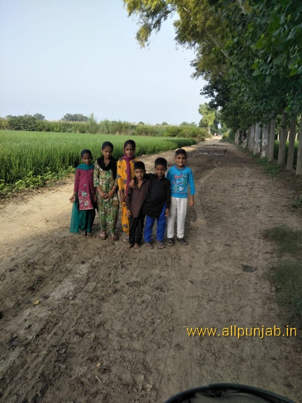Children in fields - Punjab Images